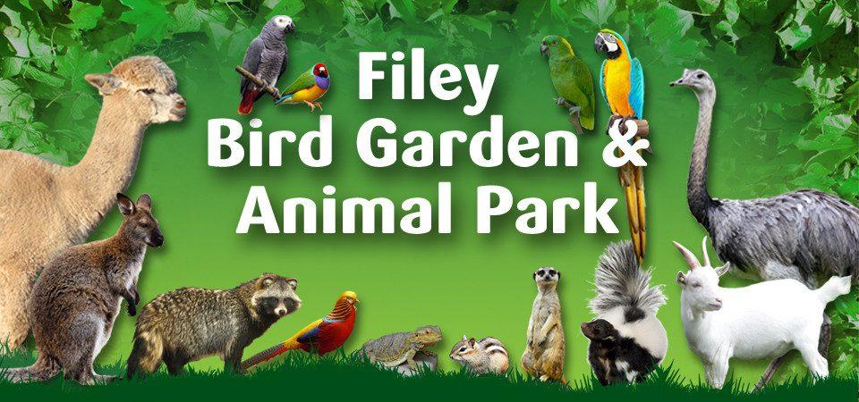 Attractions Filey Bird Garden Animal Park